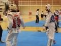 24-Taekwondo-equanum