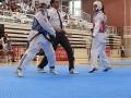 3-Taekwondo-equanum
