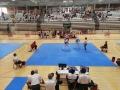 33-Taekwondo-equanum