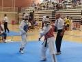 8-Taekwondo-equanum