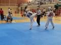 9-Taekwondo-equanum