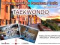 X-Open-Taekwondo1