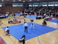 X-Open-Taekwondo5