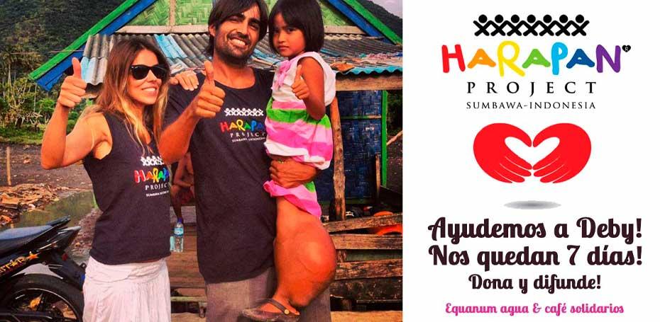 Proyecto Harapan, Harapan project, equanum