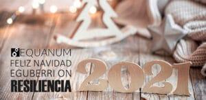Lee más sobre el artículo 2020 Navidad y un próspero 2021
